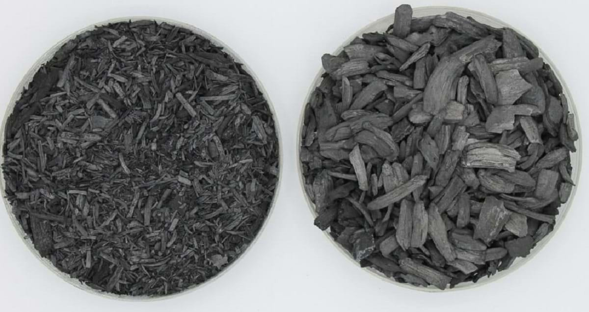 Example of 2 different biochar materials https://greener4life.com/blog/biochar-fertilizer